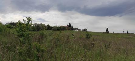 Country House In vendita in Val Melaina, 00118, Roma, Roma photo 0