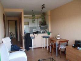Apartamento en pleno parque natural del delta de l'Ebro, a 50 metros de la playa photo 0