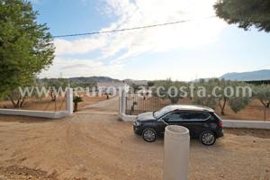 Finca con dos casas de campo en una parcela llana, plantada de frutales y oliveras. Comparten una piscina privada photo 0