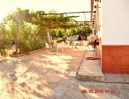 ¡!!! ESTUPENDO TERRENO CON OLIVOS, CASA Y PISCINA MUY PROXIMO AL CENTRO DE ALCARACEJOS, PROVINCIA DE CORDOBA ¡!! photo 0