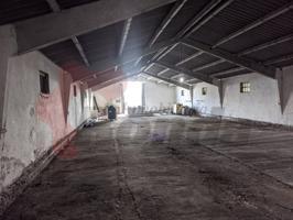 Ganaderia a 10 km de Lugo photo 0
