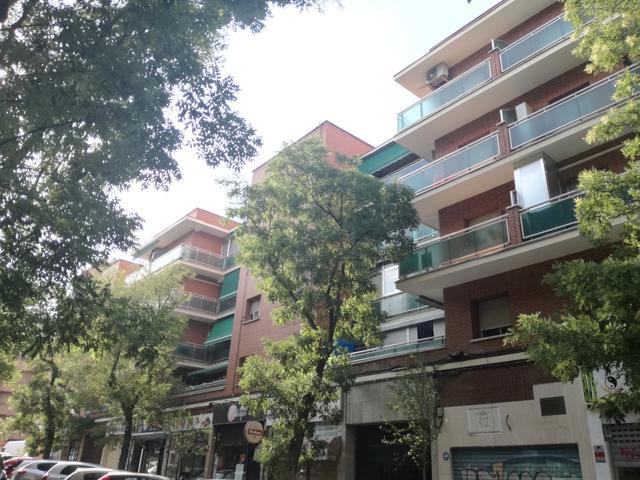 Pisos Y Casas A La Venta En Calle De La Alondra Madrid Madrid