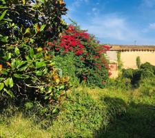 Casa En venta en Carrer Torres Jonama, Mont-Ras photo 0