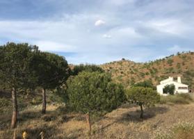Villa a la venta en Almogía consta en un salón con chimenea, un comedor, una cocina amueblada, 3 dormitorios, 2 baños y una terraza. 3 Pozos, Aljibe de 15.000 litros y 300 preciosas viñas para elaboración de vino ecológico. Parcela de 190.000 m2. photo 0