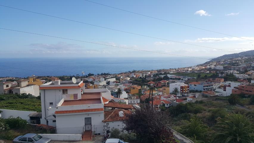 Alquiler Pisos Y Casas En Santa Ursula Santa Cruz De Tenerife