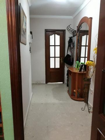 Preciosa vivienda en Miralbaida! sin barreras arquitectónicas! bajo con patio de 70m2 de uso privado! vivienda ubicada en Miralbaida, zona muy tranquila y ajardinada. la vivienda dispone de 89m2, distribuidos en tres dormitorios, dos baños completos photo 0