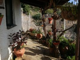 Casa En venta en Arafo photo 0