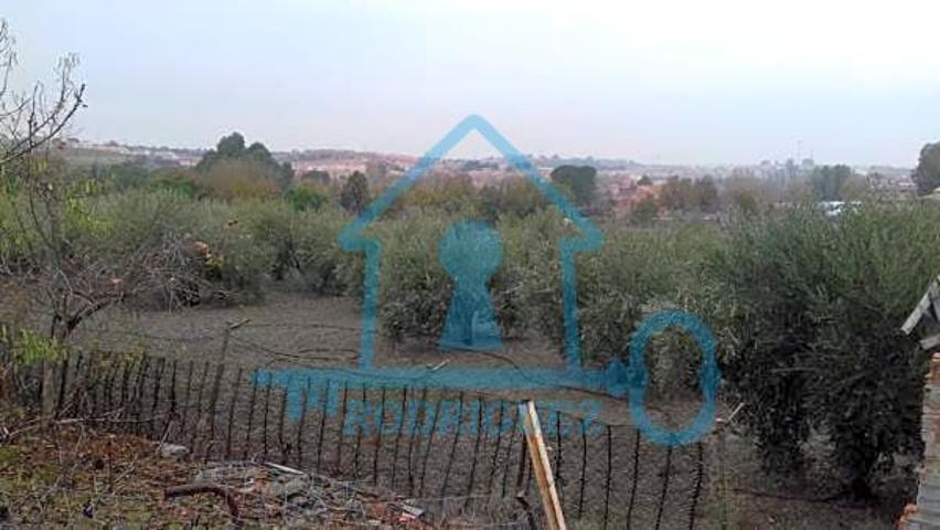 Inmobiliairia Rodriguez vende en Yeles (Toledo)  parcela de 2.500 m2 . photo 0