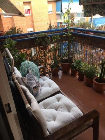 Comprar Pisos y Casas en Rivas-Vaciamadrid, Madrid   Trovimap on