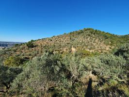 Finca rustica en venta en Olesa de Montserrat photo 0