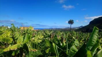 Piso En venta en Cabo Verde, Moya photo 0
