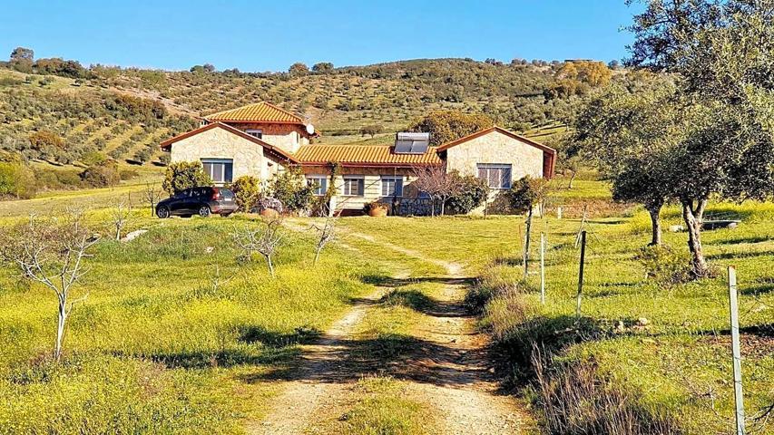 Amplia y rústica villa rodeada de oliveros. photo 0