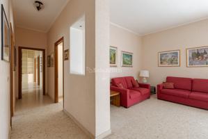 Appartamento Affitto in Piazza Biagio Pace, Gianicolense-Monteverde, 00118, Roma, Rm photo 0